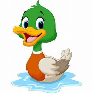 /Duck.jpg